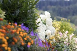 Blüten-Blumenpracht-Angushof
